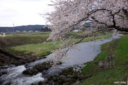 Nakayama_08_2