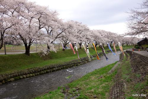 Nakayama_11
