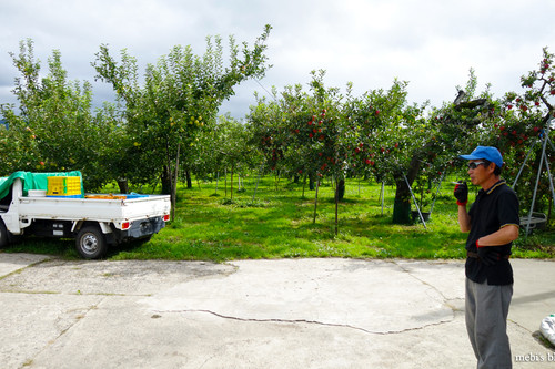 Apple_farm_04