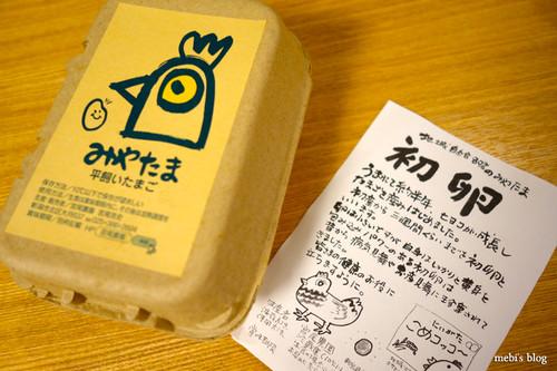 Miyao_egg_01