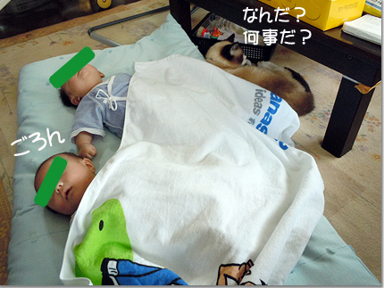 Twins74_02