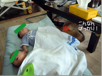 Twins74_03